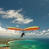 High Flyin-98