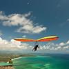 High Flyin-99