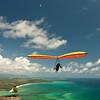 High Flyin-100