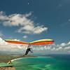 High Flyin-97