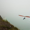 Foggy Launch-19