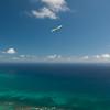 Visitor flight-20