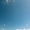 Visitor flight-124