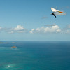 Blu Sky Flying-91