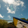 Flying Phil-8