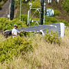 Flying Phil-5