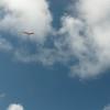 Wings over Makapuu-18