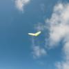 Wings over Makapuu-5