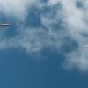 Wings over Makapuu-19