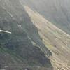 Wings over Makapuu-92