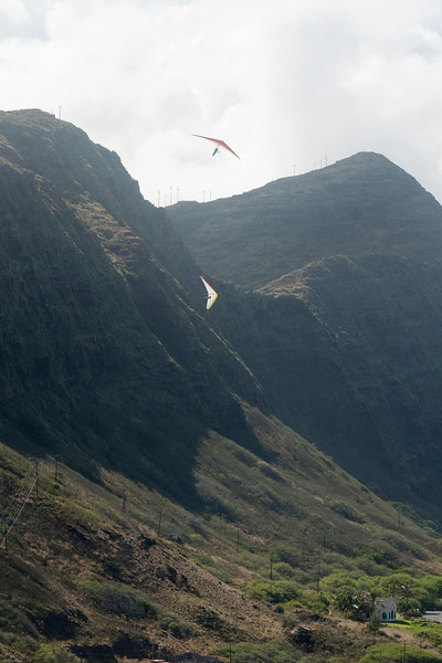 Wings over Makapuu-83