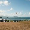 Wings over Makapuu-185
