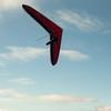 Afternoon flight-86