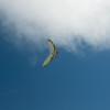 Goto's Girlie Glider-16