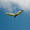 Goto's Girlie Glider-9
