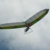 Goto's Girlie Glider-6