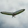 Goto's Girlie Glider-8