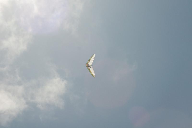 Goto's Girlie Glider-79