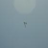 Goto's Girlie Glider-87