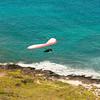 Flying Low over Makapuu-130