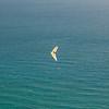 Wednesday flying-10