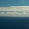 Wednesday flying-6