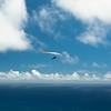Test Flight for Leo-14