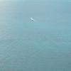 Afternoon Flight-20