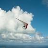 Paper Glider-8
