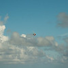 Paper Glider-13