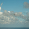 Paper Glider-15