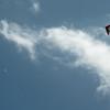 Paper Glider-95