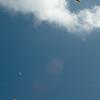 Paper Glider-98