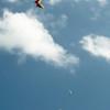 Paper Glider-97