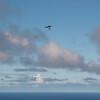 Cloudy Flights-13