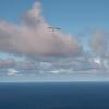 Cloudy Flights-16