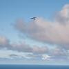Cloudy Flights-14
