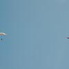 Blue flight-189