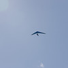 Hang Gliding in 3D-134
