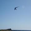 Hang Gliding in 3D-139