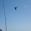 Hang Gliding in 3D-140