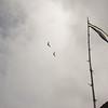 Cloudy Flight-7