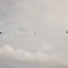 Cloudy Flight-11