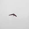 Cloudy Flight-1