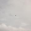 Cloudy Flight-13