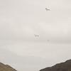Cloudy Flight-19