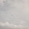 Cloudy Flight-14