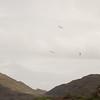 Cloudy Flight-20