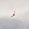 Cloudy Flight-70