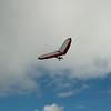 Full Flight-12